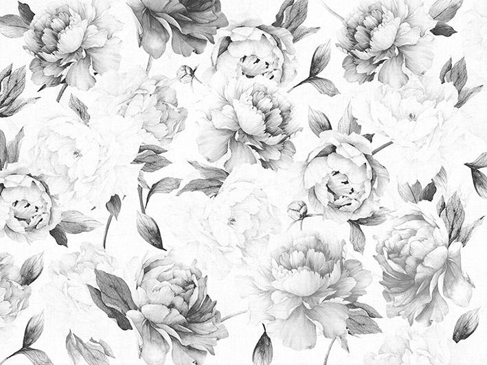 Peonies_black_and_white_wallpaper