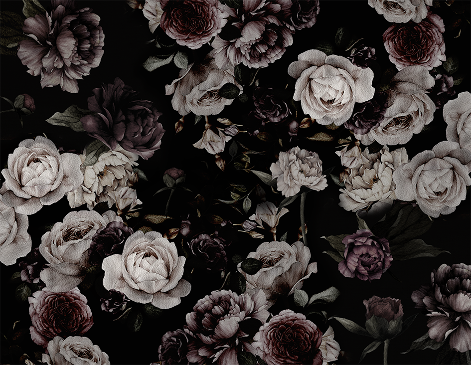 Rose_is_a_rose_wallpaper